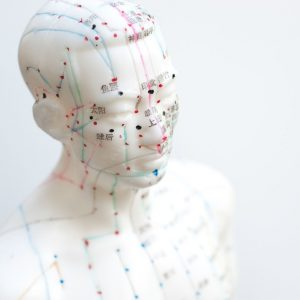 Acupuncture meridian man